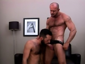 Muscle bear eats hot hairy cock
